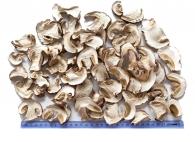 Грибы белые сушеные экстра, Территория тайги, 60г